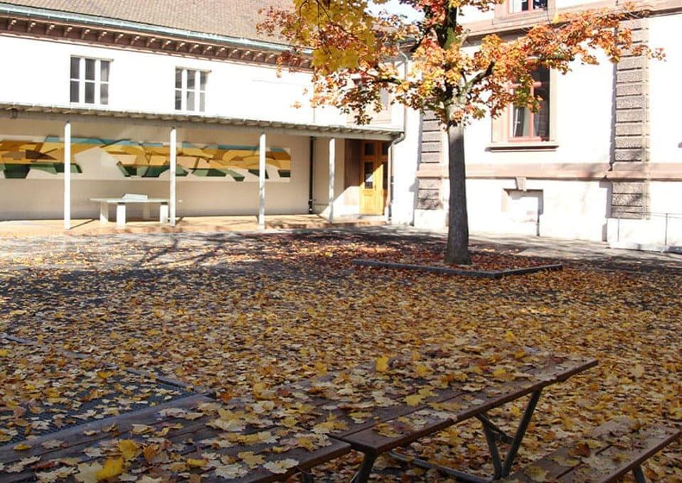bunte Blätter fallen, Schule St. Johann